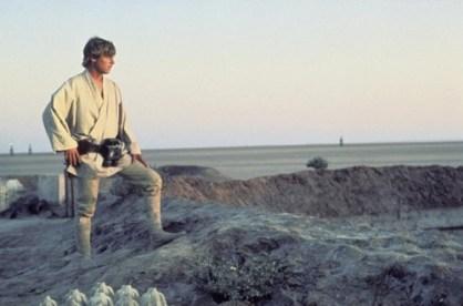 Skywalker sunset